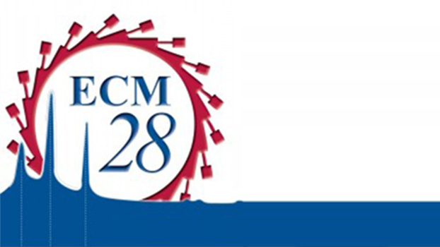 ECM 28 XXVIII European Crystallographic Meeting